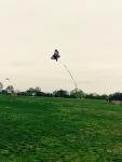 Children fly kites in DC