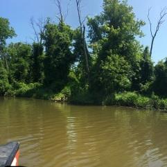 July2018-Canoe